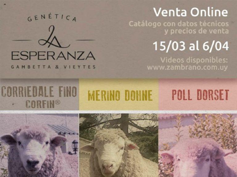 Venta Online 15/03 al 6/04